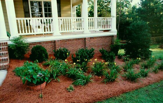 Mulch and Pine Straw